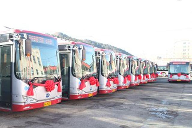 公开招标采购 哈市20条公交线更新600台电动公交车