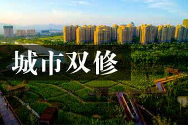 """黑龙江省出台""""城市双修""""方案治理城市病"""