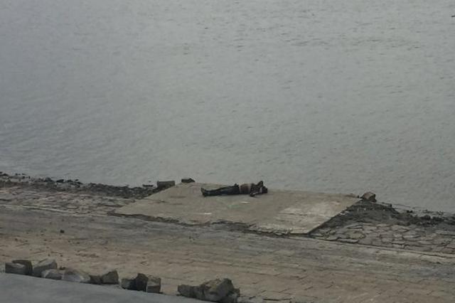 道里老头湾水域惊现浮尸 身有多处血痕警方介入调查