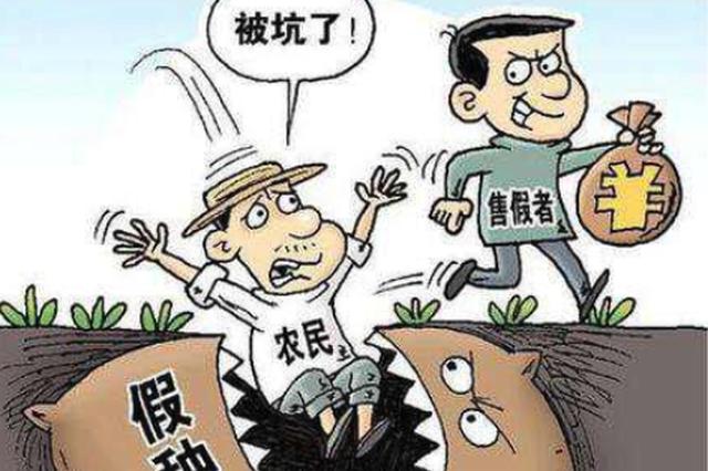 哈市民警追回6000袋假种子 200余万赃款还受害农民