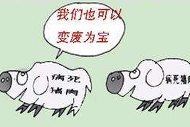 黑龙江省明确病死畜禽无害化处理各方责任
