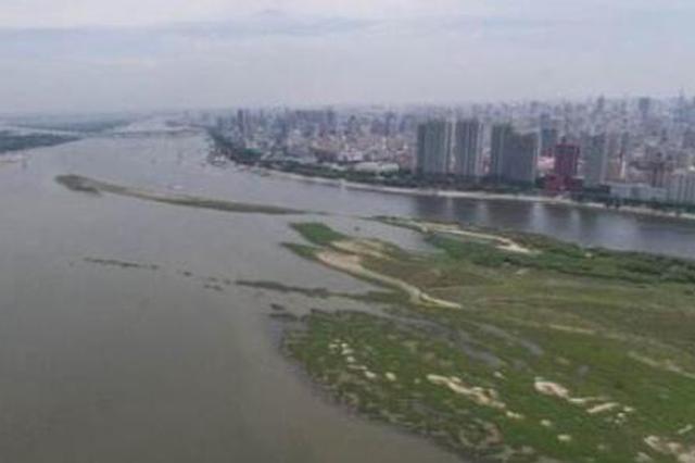 哈尔滨段水位一天涨11厘米 部分中小河支流现洪峰