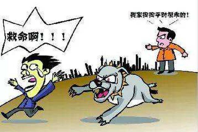 大庆市禁止宠物进入医院等医疗卫生公共场所