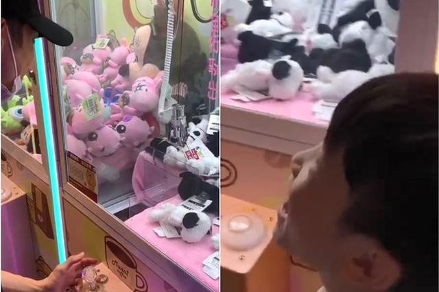 辰亦儒街边夹娃娃技术欠佳 遭身旁小孩吐槽超搞笑