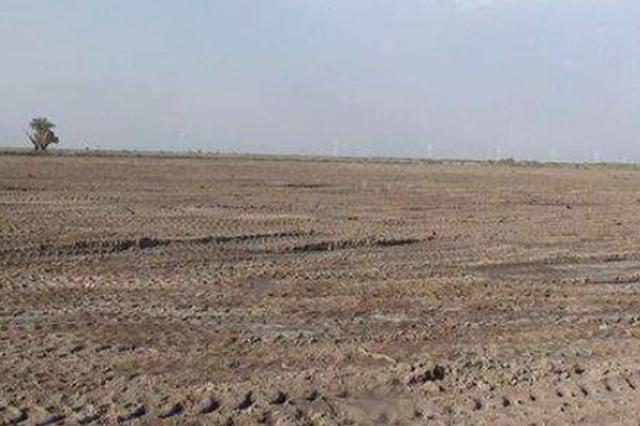 非法毁林开荒种地14.13亩 村民被判8个月罚2.2万