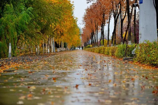秋褲不好使了拿出羽絨服吧 哈爾濱的天氣有大變化