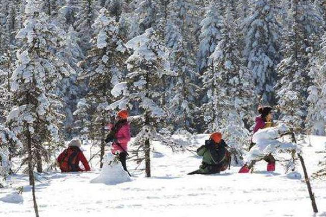 下月起哈市增开至雪谷旅游直通车 需提前预订