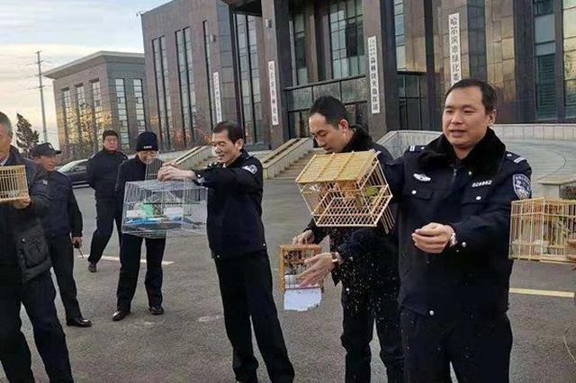 冰城也有朝阳群众 破获捕售野生鸟案三分之一为市民举报