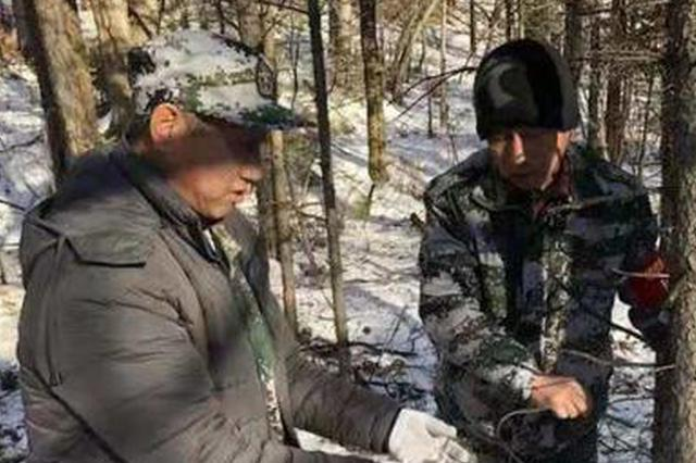 """黑龙江穆棱300巡护员上山给野生动物一个安全的""""家"""""""