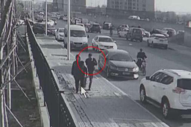 两男子专挑遛犬人碰瓷:一月得手20余起 被刑拘
