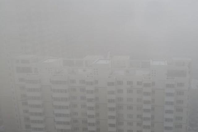 出行提示:哈尔滨出现大雾天气 高速封闭机场无航班起降