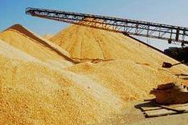 齐齐哈尔龙头企业提升粮食加工比重 各项指标均大幅增