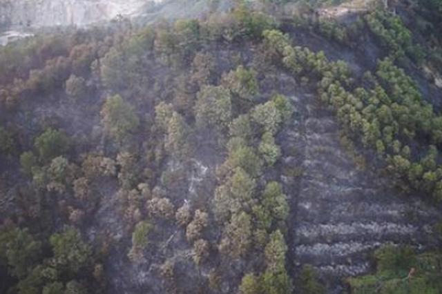 哈尔滨市提?#25942;?#20837;春季森林草原防火期 较往年提前18天