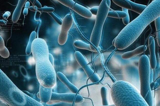 大肠杆菌超标还过期 江苏兴化学生奶频频出事
