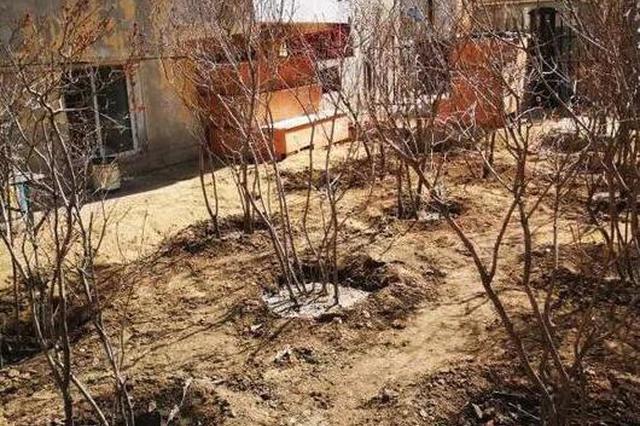 哈尔滨3名公职人员被问责 一旅店因干这事被上限处罚