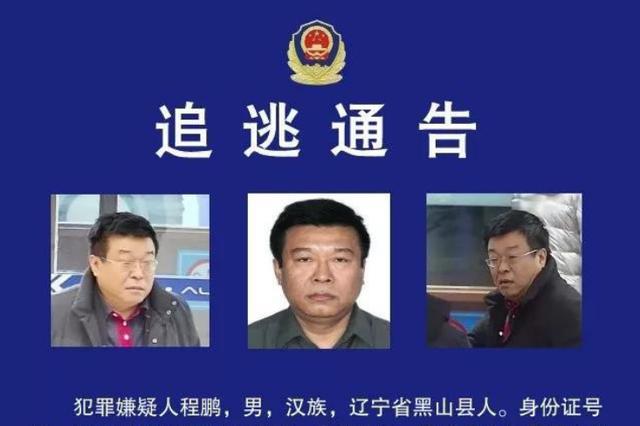 牡丹江市政府原副秘书长程鹏涉职务犯罪 警方发追逃通告