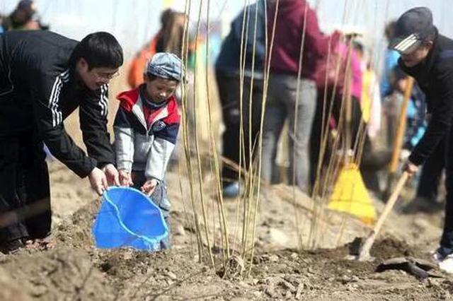 春暖龙江植树造林正当时 今年黑龙江省计划造林117万亩