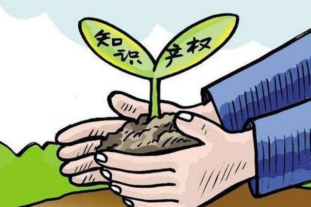 去年黑龙江省法院受理各类知识产权案件创新高