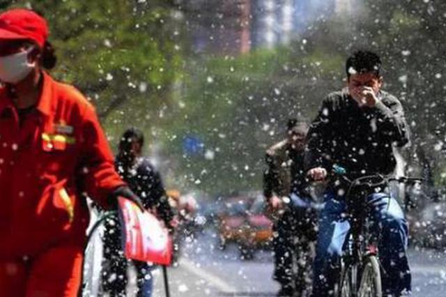 """大风天、重污染?""""鬼天气""""如何预防眼部和呼吸道疾病"""