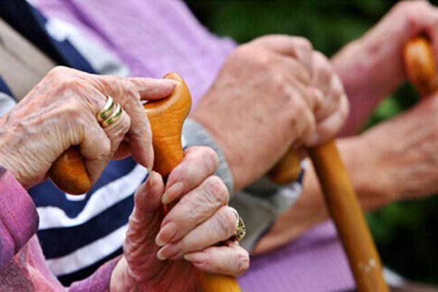 """哈市养老服务行业协会成立 首批30家机构""""抱团""""发展"""