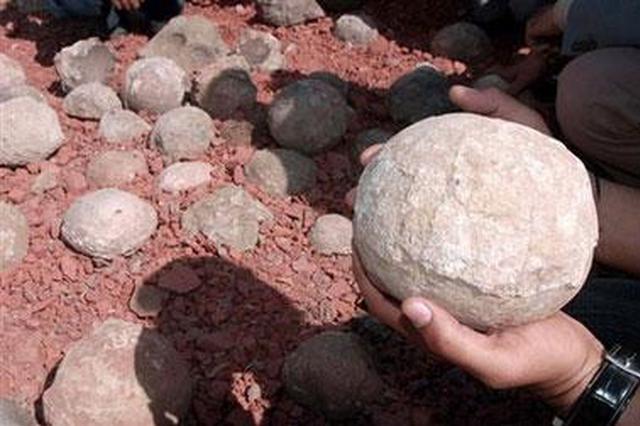 """4名大学生路边发现一个""""怪石头"""" 竟然是""""恐龙蛋"""""""