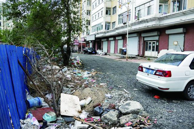 哈尔滨市宜居家园小区楼下生活垃圾铺了几十米