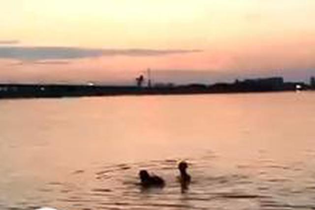 哈市一男子酒后下水遇险 被江边救护队员及时救上岸