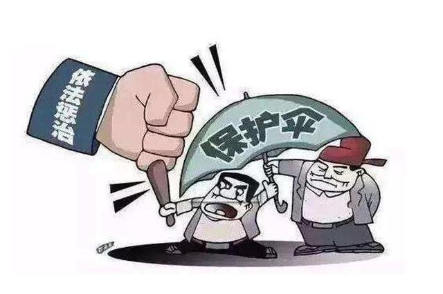 法网恢恢疏而不漏 黑龙江省铁腕出击打击黑恶势力