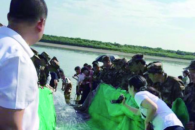 """12万尾""""水中大熊猫""""进入黑龙江呼玛县江段"""