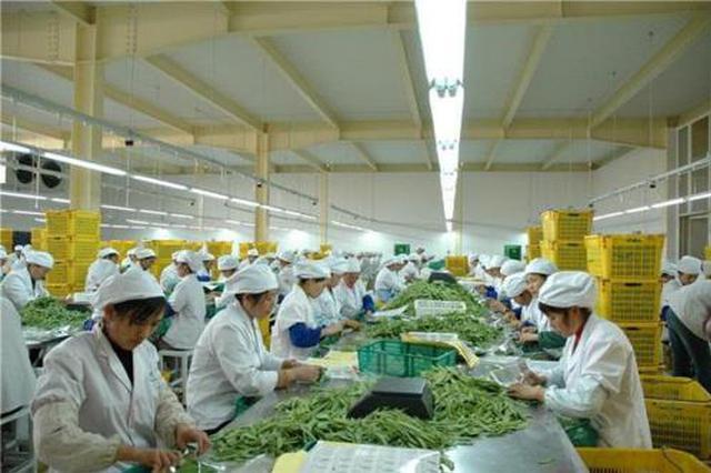 哈尔滨农产品加工瞄准精深持续发力 打造十大特色产业带