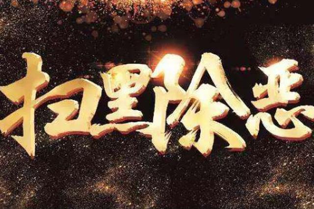 扣押、冻结2.35亿元 哈尔滨南岗区打掉12个恶势力团伙