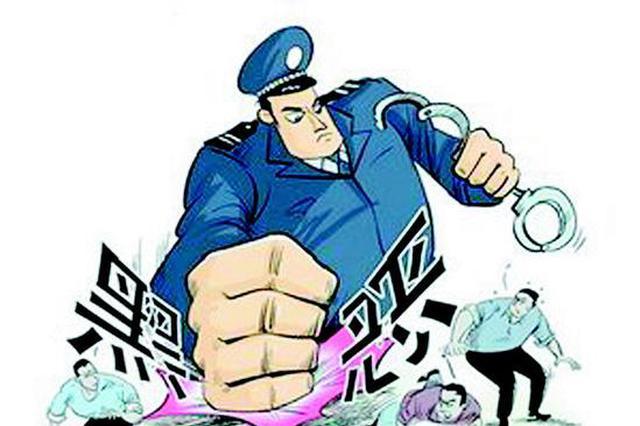 今年前8个月 黑龙江省打掉黑恶犯罪团伙224个