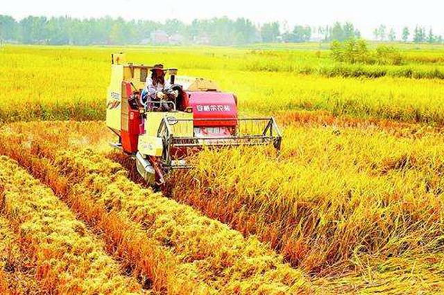 大发快3官方-大发快3平台省明确玉米和水稻关键农机技术地方标准