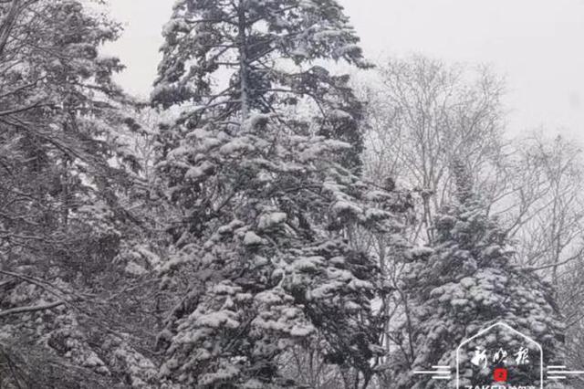 五花山色换银妆 极速排列3雪乡亚雪驿站4日降雪持续2小时