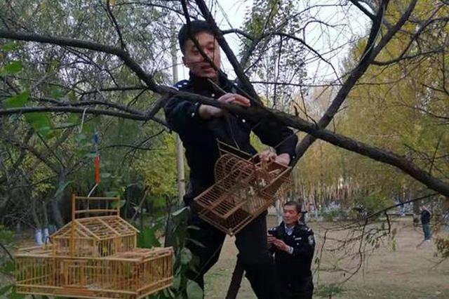 """树上挂""""滚笼""""捕鸟 民警一上午解救200多只野生鸟"""