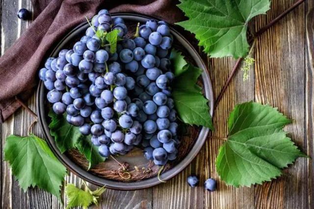 冰城人日啖葡萄16万斤 成了最受宠的水果