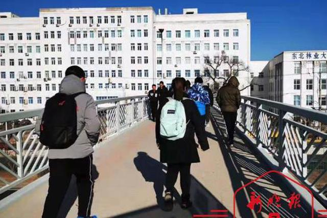 哈尔滨二环西线又通4座天桥 连接新松街健康路等节点