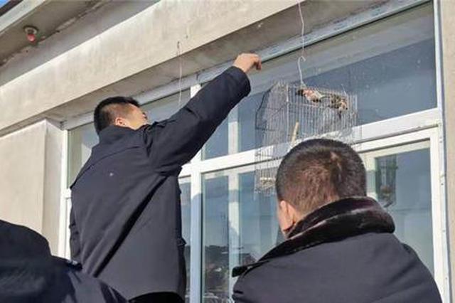 又有152只鸟被救下 哈市一男子冰冻60只扒皮小鸟被刑拘