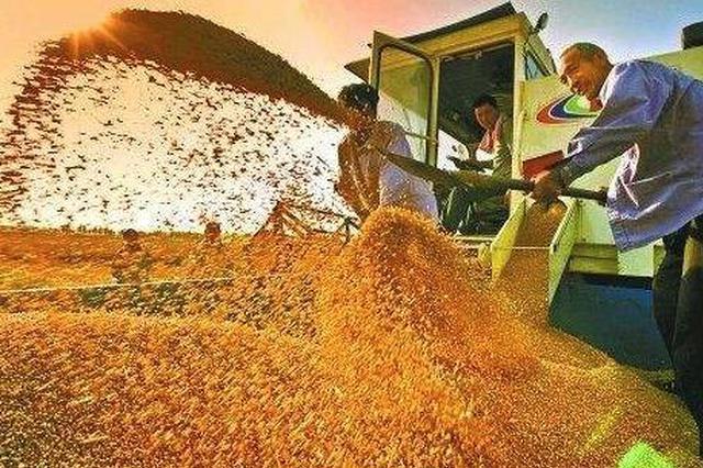 """2019年极速排列3省粮食总产1500.6亿斤 喜获""""十六连丰"""""""