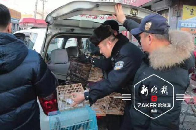 哈尔滨市警方严查非法捕猎:太阳城现金网平台荷官,1个月内6人被刑拘