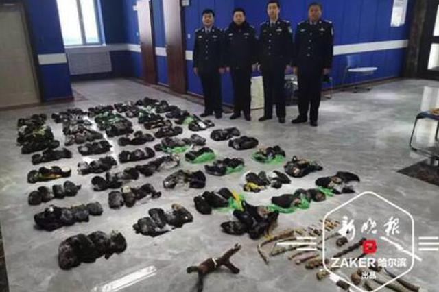 黑龙江破获重大走私非法收购出售珍贵野生动物制品案