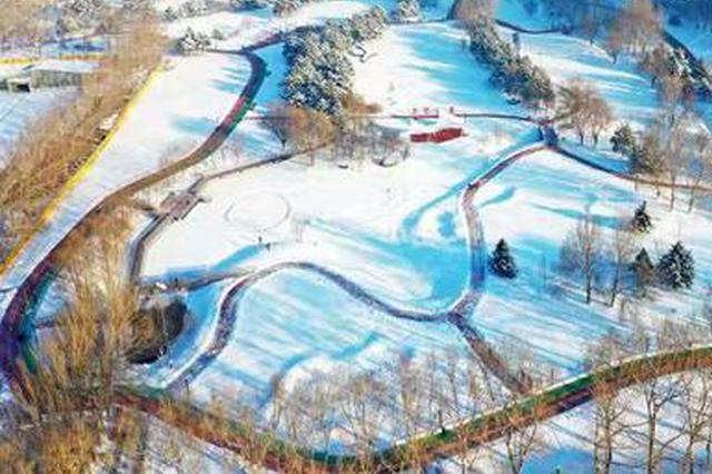 """保留自然降雪景观效果 哈尔滨11座公园尝试""""留白""""区"""