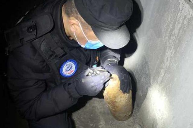 哈尔滨市香坊区一村民犁地惊现炮弹 别担心已连夜清除