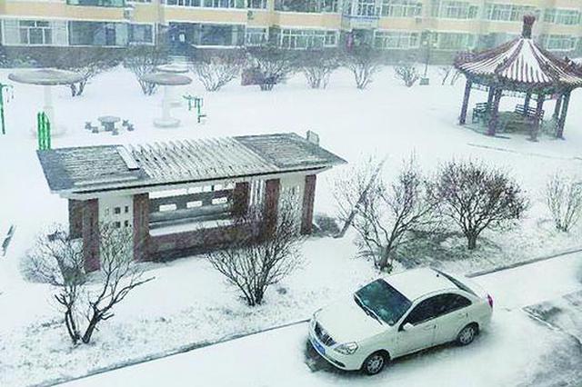 东北持续低温30年罕见?省气象专家:并不少见