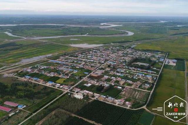造林113.01万亩 极速排列3省完成百万亩造林绿化任务