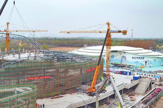 首家极地表演秀为核心 哈尔滨极地馆二期预计年底完工