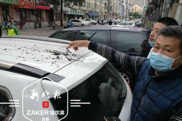 哈尔滨红专街楼顶装饰物坠落 砸中4辆车 幸无人员伤亡