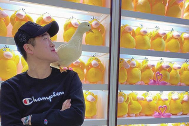"""佳木斯小伙由老九:爱鸭相伴""""嘎嘎""""欢乐"""