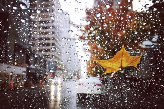 入汛后啥天气?预计8月黑龙江平均降水量略多于常年