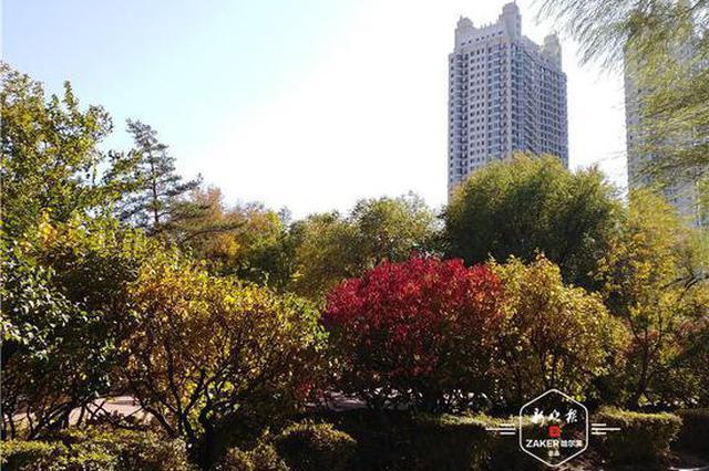 """在家门口赏""""秋天童话"""" 20个城市公园打卡冰城最美秋色"""